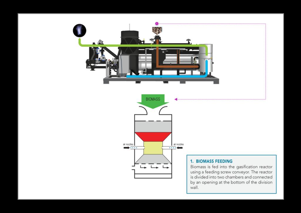 1.-Biomass-feeding-V2